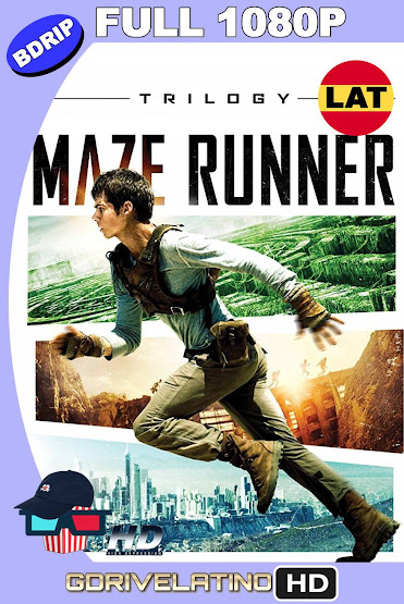The Maze Runner (2014-2018) [Trilogía] BDRip 1080p Latino-Ingles MKV