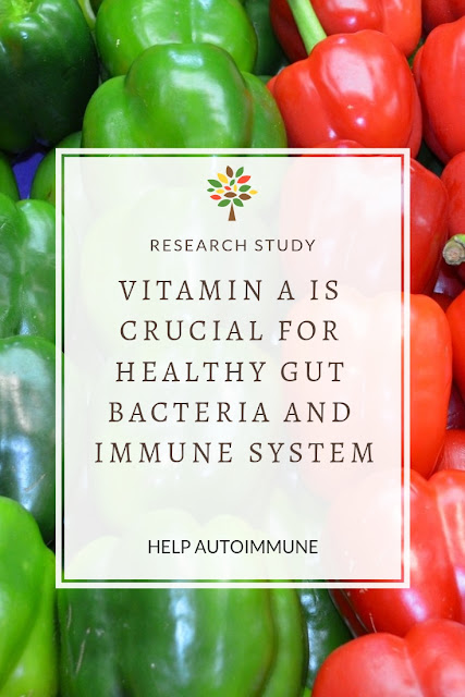 Vitamin A and Healthy Gut Bacteria