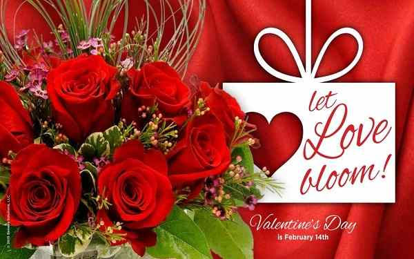 Valentines Day 2017 Best Message Wishes Images Happy Valentines Day Quotes