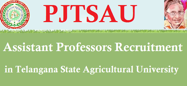 TS State, TS Jobs, Recruitments, Telangana State Agricultural University, PJTSAU, Assistant Proffessors