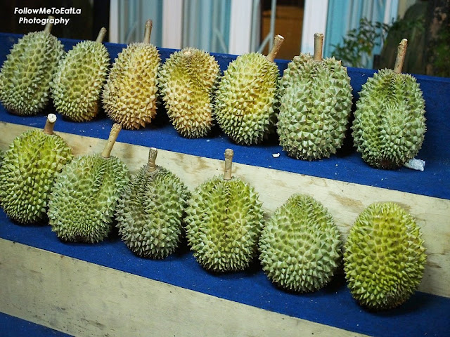 Malaysian King of Fruit The Durian