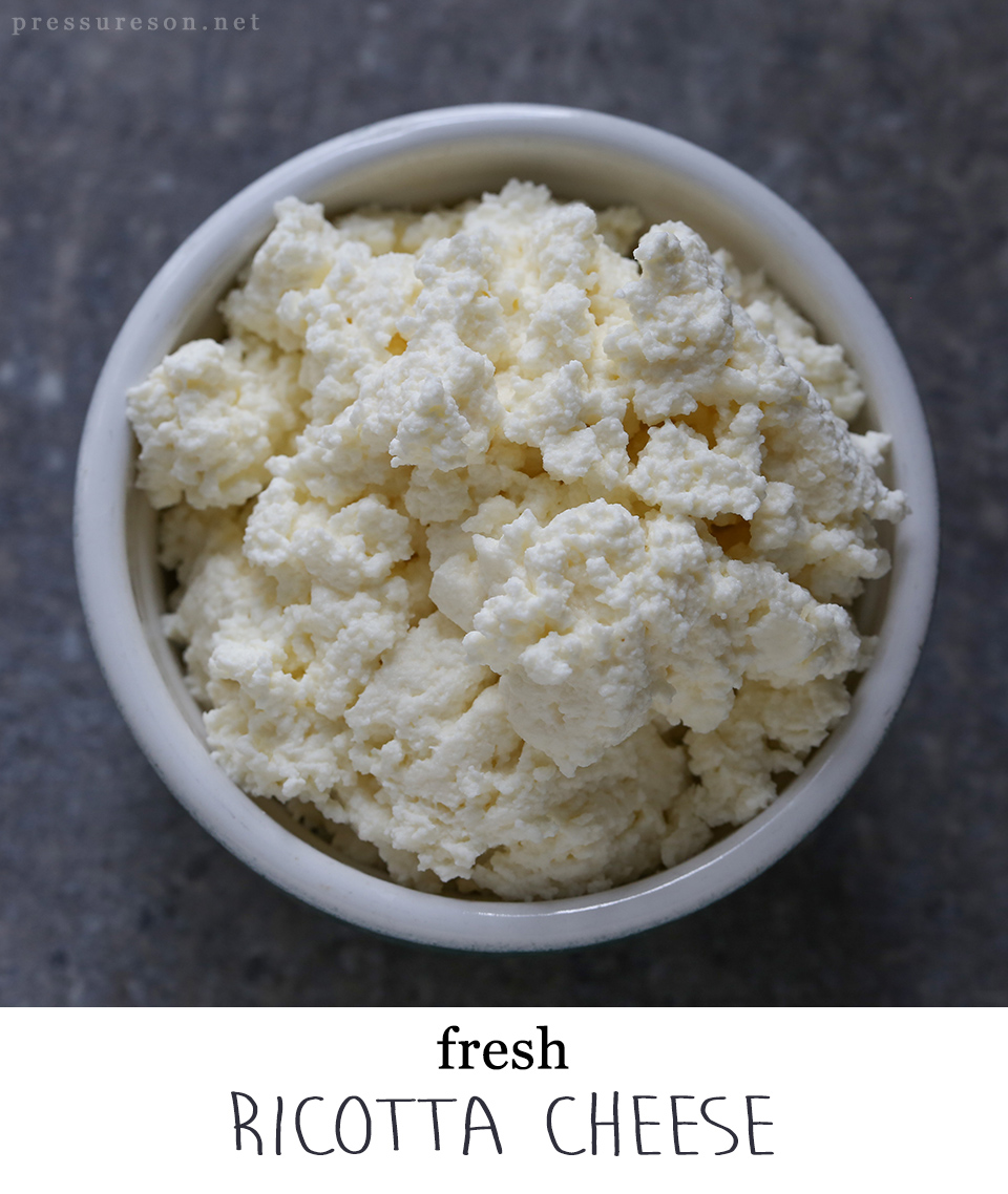 Fresh Ricotta Cheese - Pressure's On