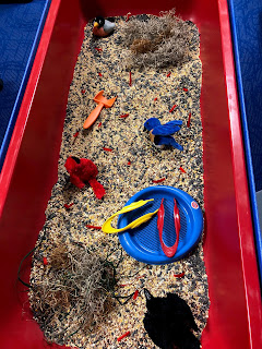 sensory bin filled with seeds, moss, branches, scoops, bird puppets