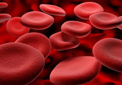 Dengue and Platelets