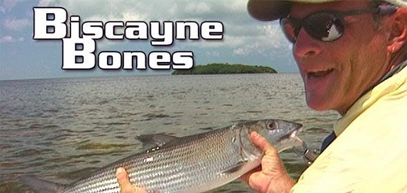 Biscayne Bones Throwback Thursday
