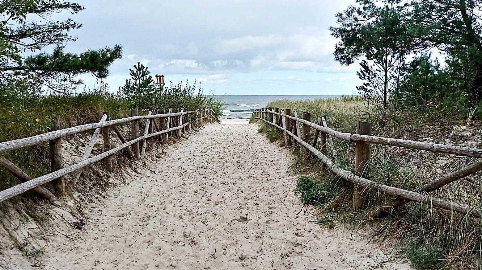 zejście na plażę dla psów w dębkach