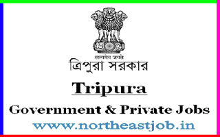 Tripura State Portal. Daily Tripurainfo Jobs and Career Website Advertisement