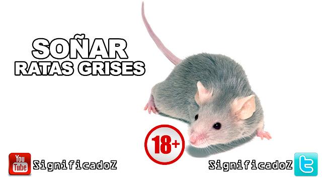 Soñar Ratas Grises ¿Que Significa?