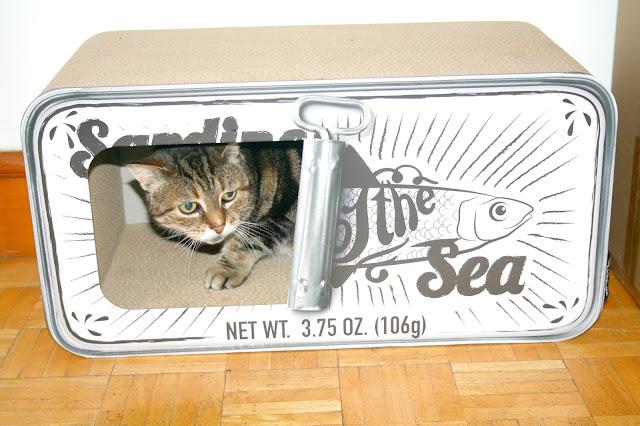 The Pet Empire - District 70 Scratching Furniture Sardine Tin