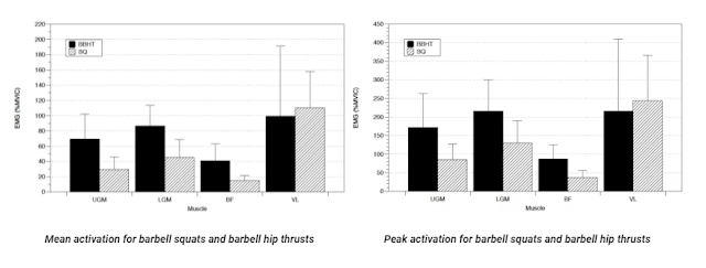 glutes exercises - hip thrust vs. barbell squat