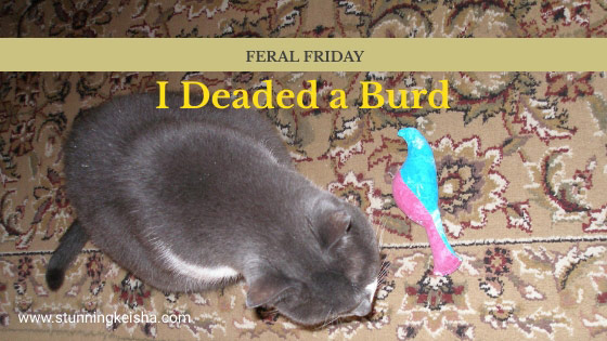 Feral Friday: I Deaded a Burd!