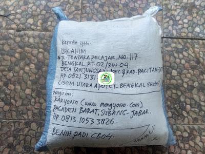 Benih Padi Pesanan  IBRAHIM Pacitan, Jatim.     (Setelah di Packing).