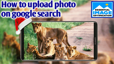 how to upload photo on google search