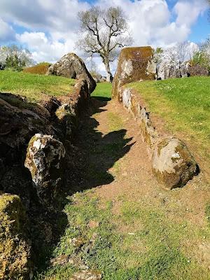 Lough Gur, Stone Circle.