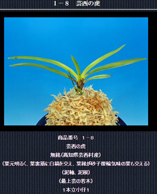 http://www.fuuran.jp/1-8.html