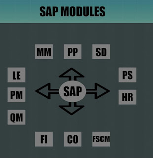 Introduction of SAP