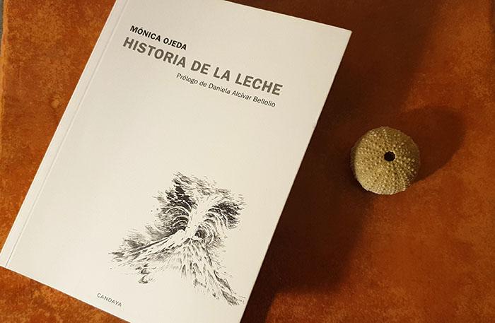 En Bestia Lectora leemos y recomendamos a Mónica Ojeda