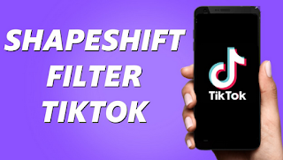 Shapeshifting filter tiktok | How to see which artist you look like by using a shapeshifting filter on Tiktok