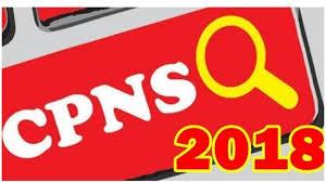 Sebelum Tes CPNS Dilaksanakan, Kanreg BKN Wilayah 7 Akan Berkunjung Ke Tebo, Ada Apa?
