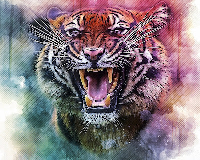 Tiger wallpaper for phonet Tiger wallpaper 4k