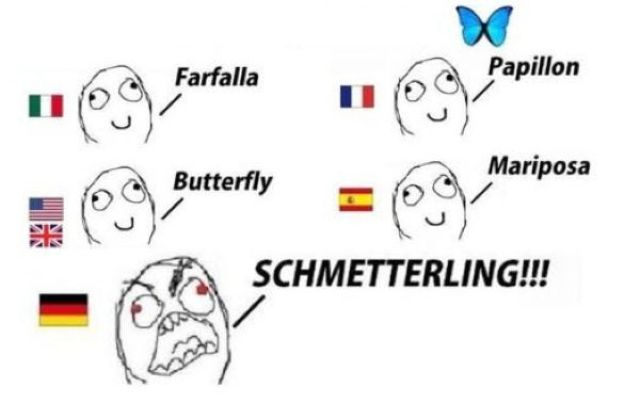 I Always Knew German Was a Special Language (9 pics)