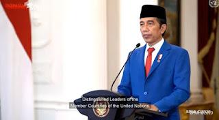 Pengamat: Baru Dengar Pidato Presiden Jokowi di PBB, Pantes Selama Ini Gak Berani Nongol