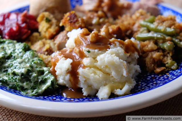 image of Thanksgiving plate with mashed potatoes, gravy, creamed spinach, cranberry sauce, stuffing, and more