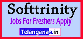 Softtrinity Recruitment 2017 Jobs For Freshers Apply