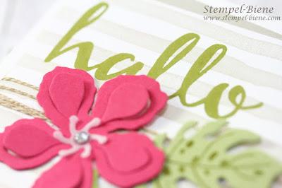 stampinup Botanischer Garten; Stampin Up Botanischer Garten; stampinup Brushstrokes; Geburtstagskarte Stampin Up; schnelle Geburtstagskarte basteln; Stempel-Biene