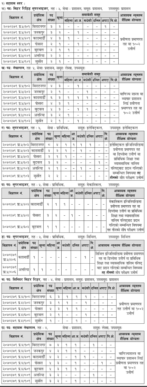 Job Vacancy Of Nepal Electricity Authority (NEA)