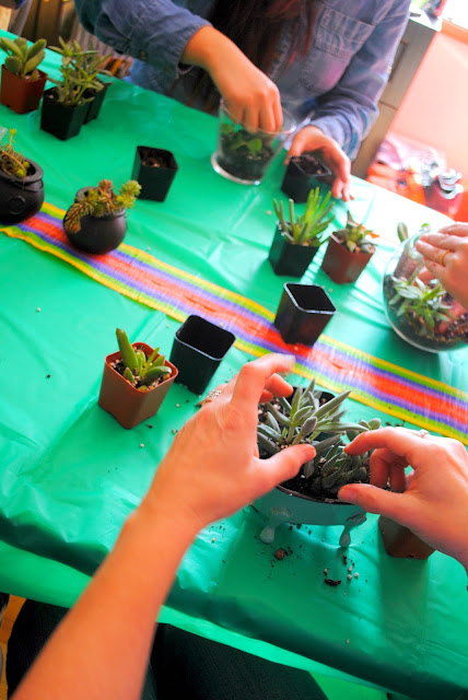 Succulent workshop party happening at Fizzy Party