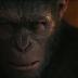 Planeta dos Macacos   A Guerra começou no trailer final do filme