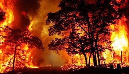 Australia fires herald global dangerous disasters