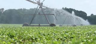٤ شواغر لشركة كويتية متخصصة بالمجال الزراعي