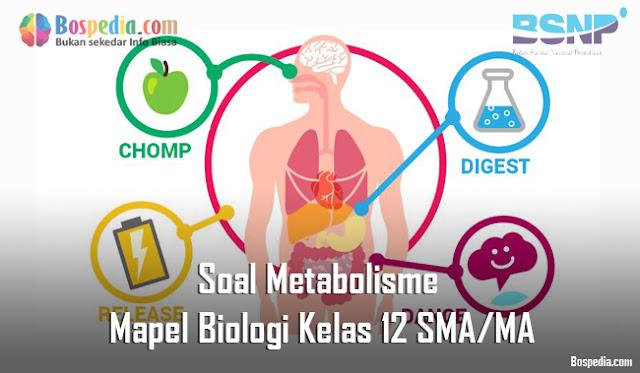Soal Metabolisme Mapel Biologi Kelas 12 SMA/MA