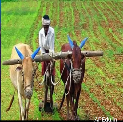 Jagan Sarkar is good news for farmers in AP.