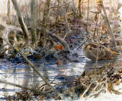 Målning av fågel vid skogsbäck