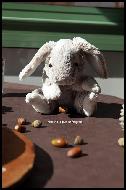 anniversaire theme foret lapin