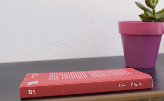 «Frágiles. Cartas sobre la ansiedad y la esperanza en la nueva cultura», de Remedios Zafra (Anagrama)