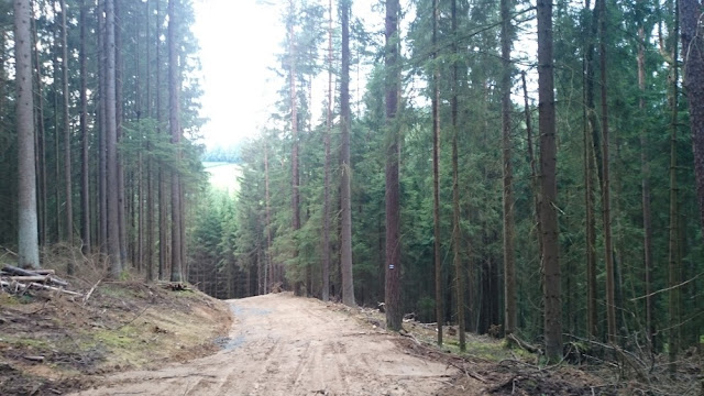Frankenwald-Steigla - Franzosen-Weg