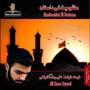 Ali Raza Surani Nohay 2016 ~ hum ali walay azadar