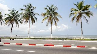 Walking Tour through Libreville to spot Palms