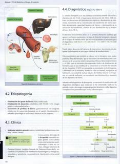 libro de Medicina en pdf Hematología Cto 8