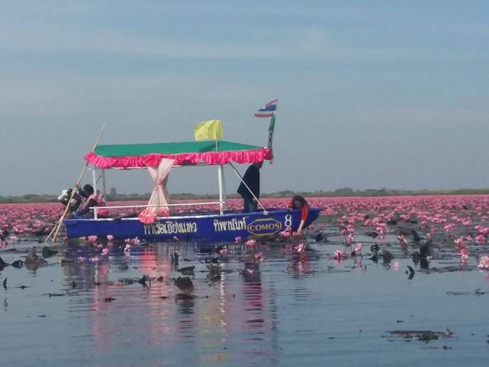 "Talay Bua Daeng which means the ""Sea of Red Lotuses"""