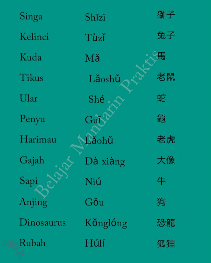 Nama Hewan Dalam Bahasa Mandarin Belajar Mandarin
