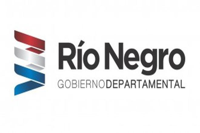 Profesionales Recursos Humanos  2018 - Río Negro -