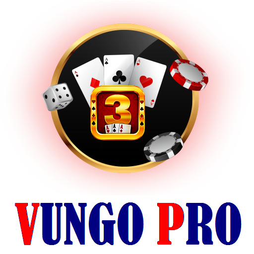 Vungo Pro