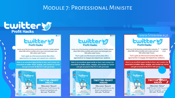 Twitter Profit Hacks Module7