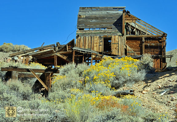 Front view Chemung Mine and Mill