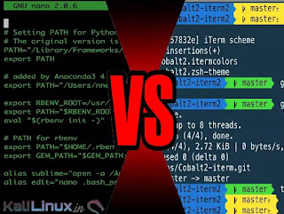 Bash or ZSH what should we use in Kali Linux